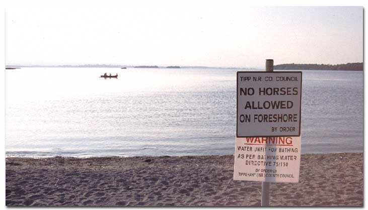 No Horses allowed on the beach